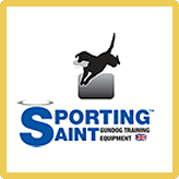 logo sporting saint