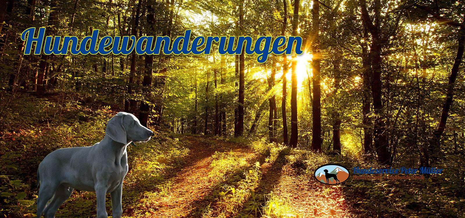 wandern mit dem hund in der fränkischen schweiz